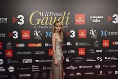 Catifa vermella VII Premis Gaudí (60)