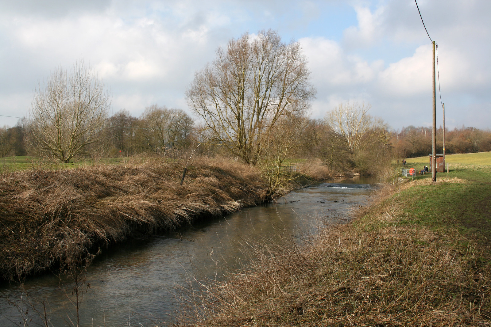 The River Colne near Earls Colne