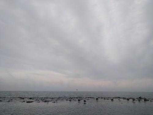 Seaside   by mhoye