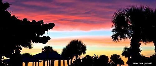 sunset sun tree beach mike set nikon dale florida palm fl 1001nights tiki englewood autofocus 1001nightsmagiccity