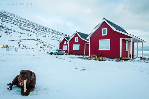 10.Eskifjordur