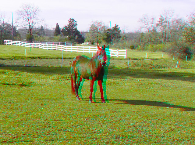 Sarah Alone in Field 3D