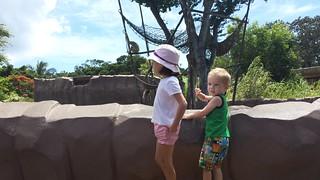 Homesewn shorts at the Zoo