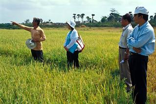 Cambodia17_04