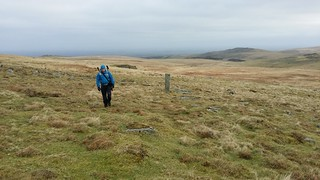 Boundary Stone above Curtery Clitters | by moorlandwalker