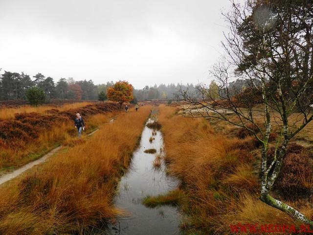 20-10-2012     Wedeblick-   Driebergen        25 Km (65)