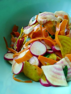 Shaved Carrot, Beet, and Radish Salad with Coriander Mustard Vinaigrette | by maozed