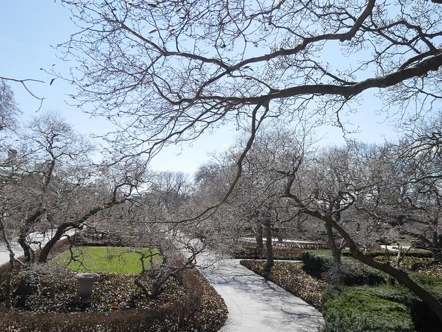 火, 2014-04-01 13:23 - Brooklyn Botanic Garden