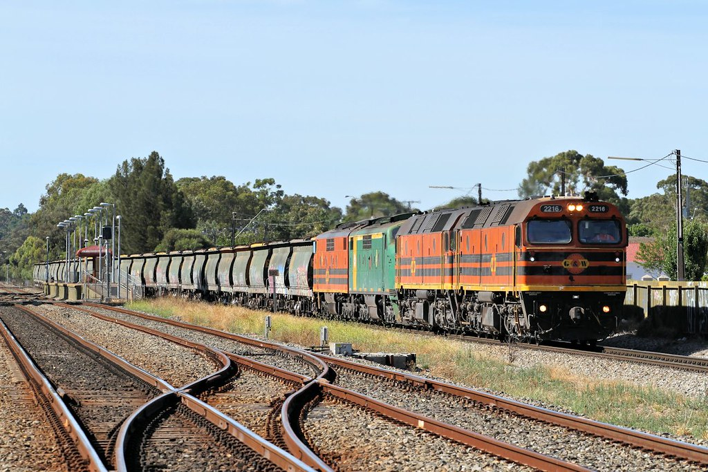 2216 2210 GM38 GM47 3142s loaded GWA Loxton grain Dudley Park 21 12 2014 by Daven Walters