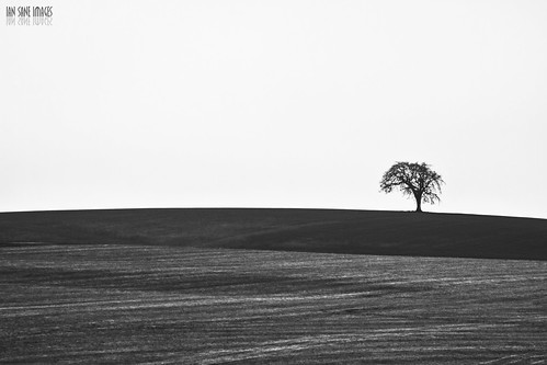 camera white black tree field oregon canon way lens landscape ian photography eos is highway images 7d salem usm southeast avenue cascade sane 117th ef100400mm f4556l 119th kuenzi