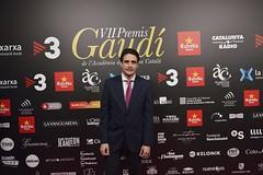 Catifa vermella VII Premis Gaudí (62)