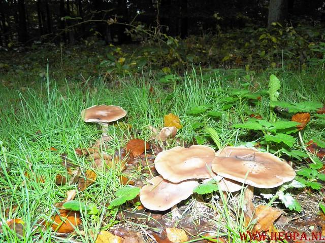 20-10-2012     Wedeblick-   Driebergen        25 Km (5)