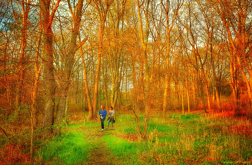 travel trees people art weather photography spring woods warm newengland sunny visit hike explore rhodeisland pvd discover pawtuxet cranston pawtuxetriver
