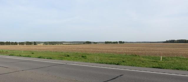 Central Wisconsin Landscape (Adams County, Wisconsin)