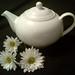 Teapot & Daisies