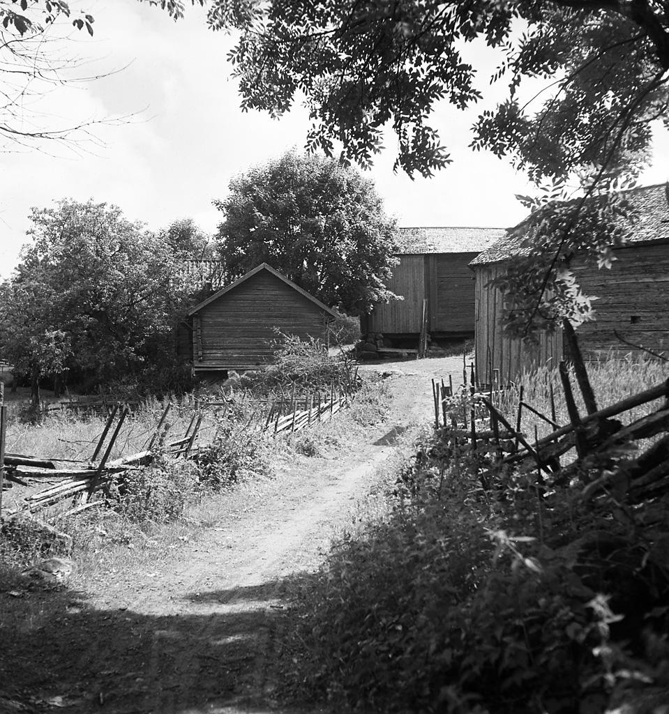 Axel Hemmar - Offentliga medlemsfoton och - Ancestry