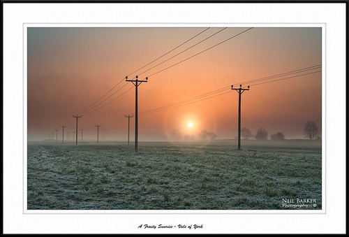 trees mist sunrise nikon frost yorkshire ngc foggy northyorkshire telegraphpoles valeofyork scruton neilbarkerphotography