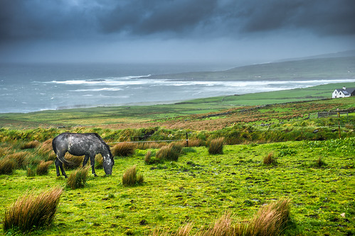 clare cliffs clouds countryside dark europe geotagged grass hills horse house ireland landscape liscannor moher photo photography sea sel2870 sky sony sonya7 travel wheater white onsale
