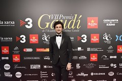 Catifa vermella VII Premis Gaudí (27)