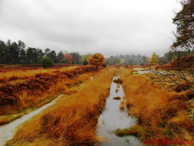 20-10-2012     Wedeblick-   Driebergen        25 Km (34)
