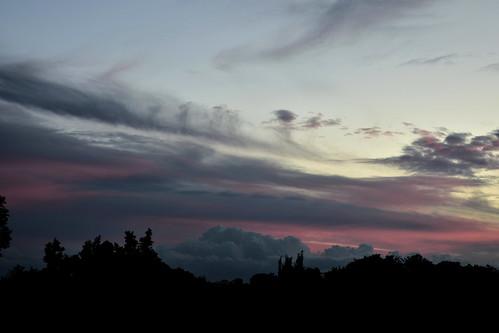 nikon d7200 dusk trees twilight tamron sunset clouds pink pinksunset storm sky blue bluesky bundaberg australia tamronsp2470mmf28divcusd 2470mm palmtrees 1000v40f topf25 1500v60f