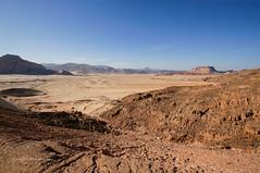 Sinai Plain 1