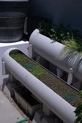water from the fish tank being filtered and adding nutrients to plants as it flows the plant pipes