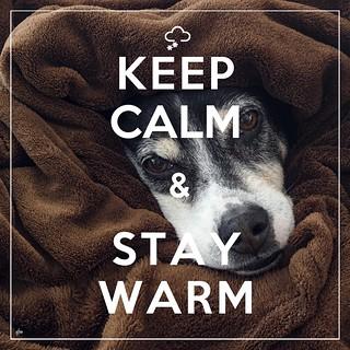 KEEP CALM & STAY WARM