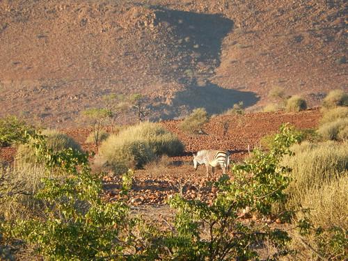 Palwag - uitzicht vanaf kampeerplaats 2