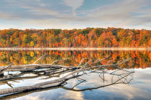 ohio lake reflection tree fall water leaves clouds canon day cloudy foliage 6d caesarcreek
