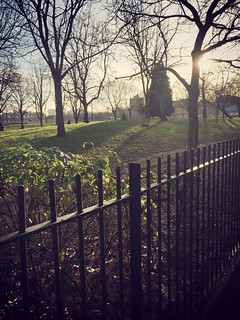 Beautiful morning for a run in Shoreditch park in London this morning! | by ProMarathon