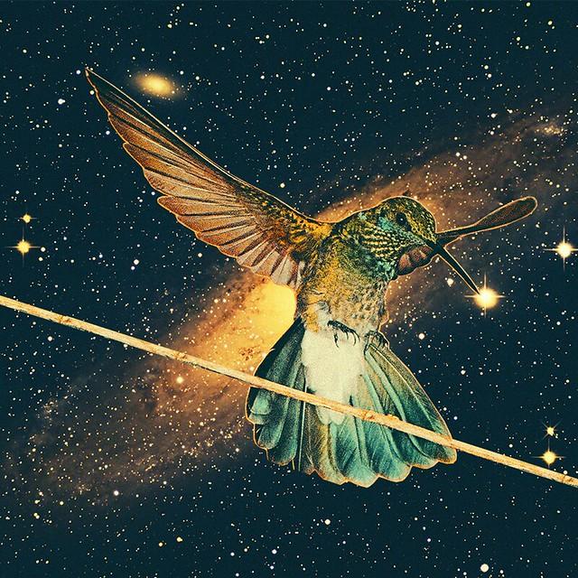 Colibri cosmique