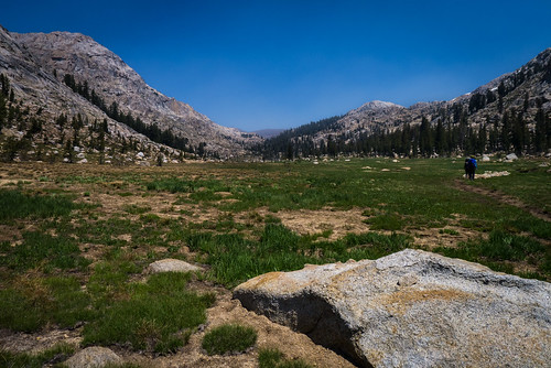 Mosquito Pass meadow | by docrpm