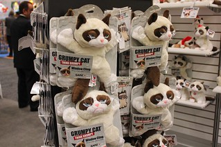 Grumpy Cat at Toy Fair 2014 with Ganz products | by insidethemagic