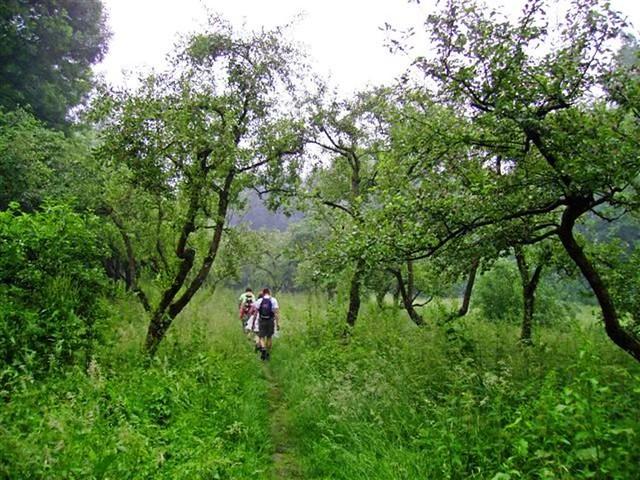Oud Zuilen 20070609   40 km (9)