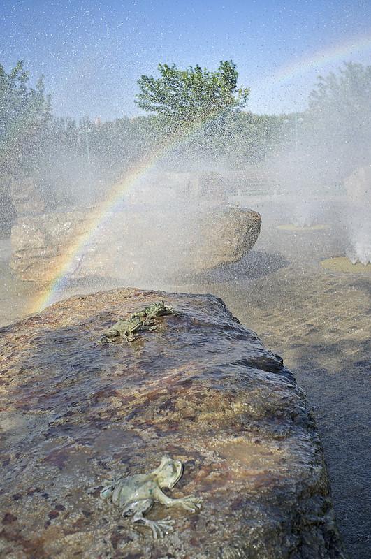 Las ranitas y el arco iris