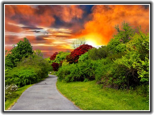 park flowers ny newyork festival rochester highland lilac monroecounty onasill