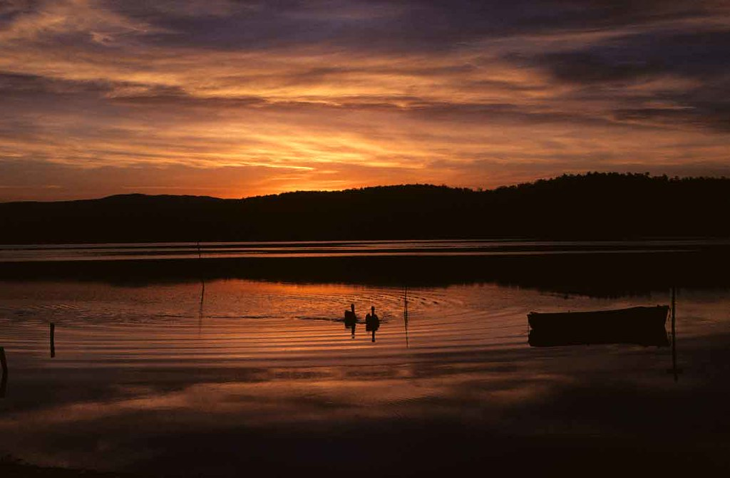 Going home - Merimbula NSW Australia