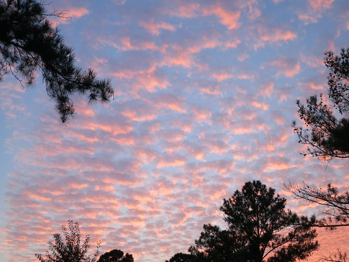 sunset dusk alabama tuscaloosa