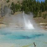 71- Yellowstone. Imperial Geyser