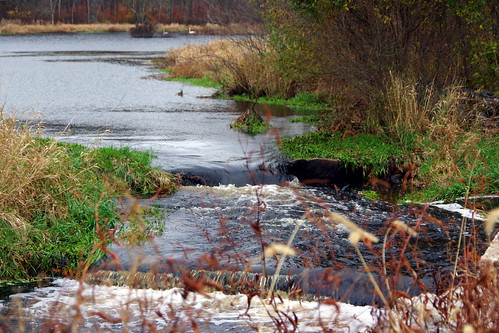 dam wetlands restoration fishladder 2015 nrd newbedford funding restorationproject acushnet prroject naturalresourcedamage