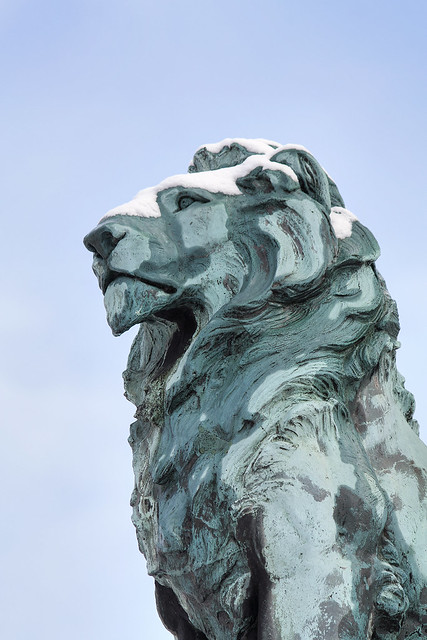 Lion, Queen Victoria Monument, Dalton Square, Lancaster, UK after snow
