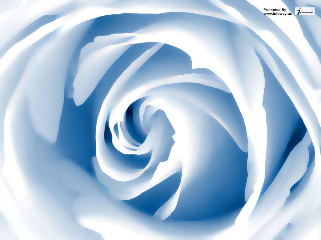 Blue Rose Flower Wallpaper Blue Rose Flower Wallpaper Flickr