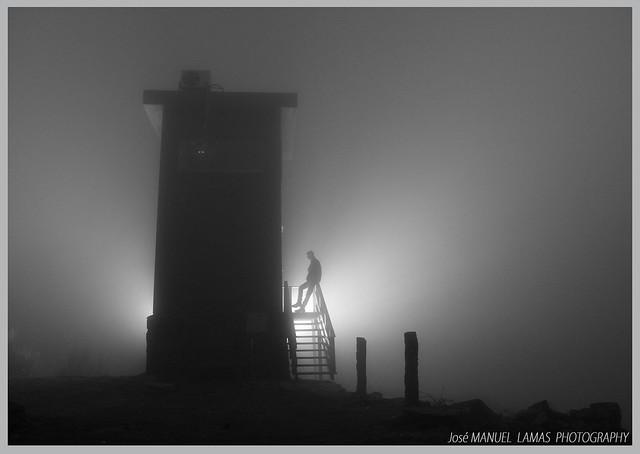 En la niebla.