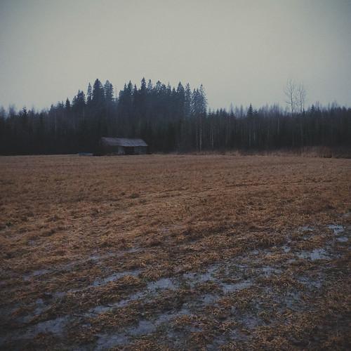winter nature wet field barn forest finland landscape europe iphone kouvola mustajoulu iphone5s vscocam
