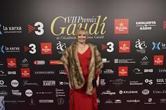 Catifa vermella VII Premis Gaudí (95)