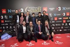 Catifa vermella VII Premis Gaudí (32)