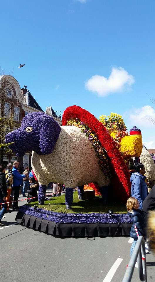 Flower floats in Haarlem