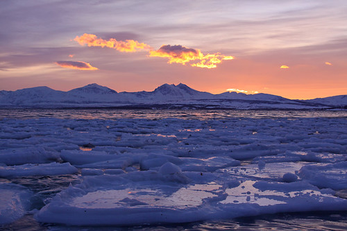 Sea Ice | by Martin Third