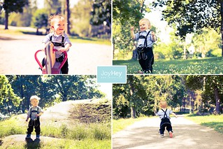 Sunny Days Like These   by JoyHey